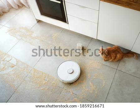 Robot vacuum cleaner cleaning the room with dirty floor. Smart home. To rule vacuum with remote control. Smart home concept. modern household wireless device. Ginger cat watching on his fault.