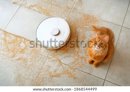 Robotic vacuum cleaner on the floor with a surprised ginger cat Stockfoto ©