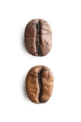 Robusta and arabica roasted coffee beans isolated on white background.