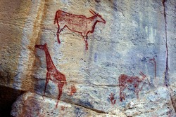 Rock Art Painting in Tsodilo Hills, Botswana. Paintings are attributed to the San People. UNESCO World Heritage Site, consisting of rock art, shelters, depressions and caves.  Creations by  Bushmen