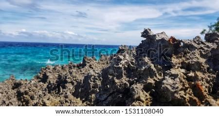 rock coastline and the sea