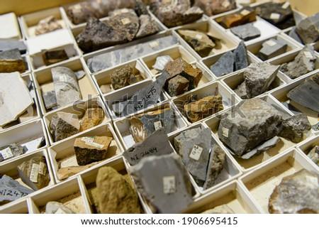 Rock core samples a geological laboratory Сток-фото ©