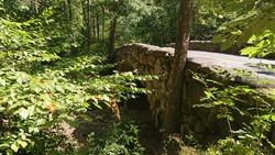 Rock Creek National Park in Washington DC