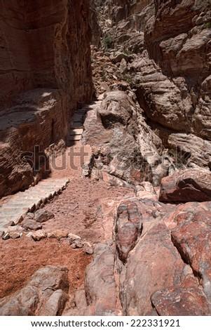 Rock cut architecture in Petra #222331921