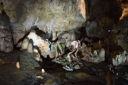 Rock formations and skeleton of a cave bear in the Bear Cave on the Swabian Alb, Sonnenbühl, Detuschland