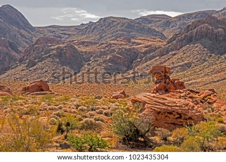 Rock formations form shapes in the Valley of Fire. #1023435304
