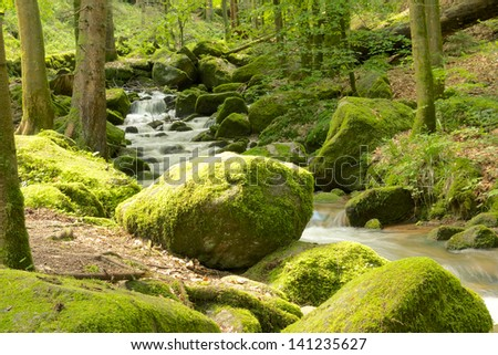 Rock full of moss at the edge of a small brook near famous Gertelbach waterfalls, Black Forest, Germany