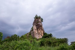 rock hill in forest on nature mountain .