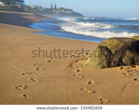 Rock on beach and footprints on sand. Shot near Ballito and Durban, North Coast of Kwazulu-Natal, South Africa.
