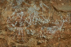 Rock painting is found in the Satpura Tiger Reserve.  Rock painting is about 10000 to 12000 years old which was made from the bark of trees, the juice of leaves and flowers.