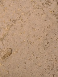 rock sand grain background texture which can be used as bump map for rendering