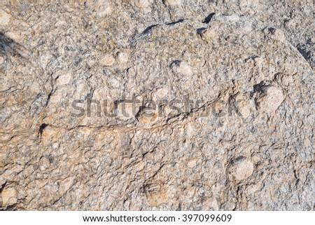 Rock texture, metamorphic rocks, background Stock fotó ©