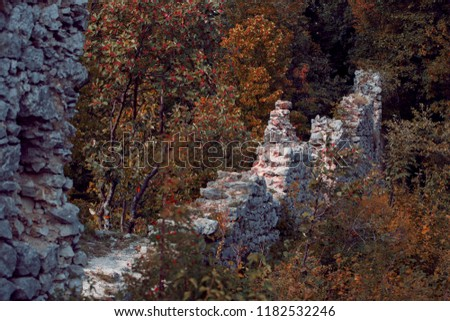rock walls, autumn nook, ruins of castle, autumn forest, fall scenery