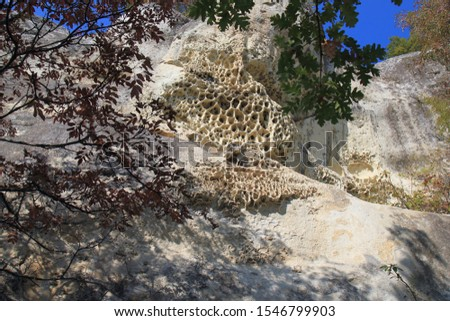 Rock weathering of bizarre shape on the Shumen plateau (Bulgaria) #1546799903