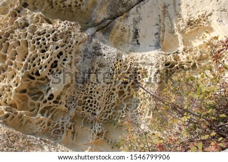 Rock weathering of bizarre shape on the Shumen plateau (Bulgaria) #1546799906