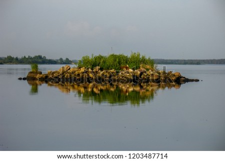 Rock with vegetation in the river. #1203487714