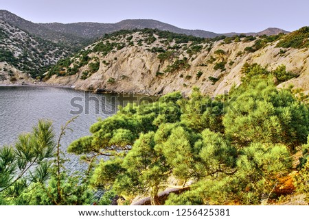Rocks along the Black Sea coast in Crimea, on which junipers grow. Relic tract of ancient junipers with healing aromas against the sky in the rays of the setting sun. #1256425381