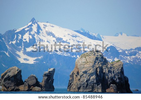 Rocks and a Great Landscape in Kenai Fjords National Park