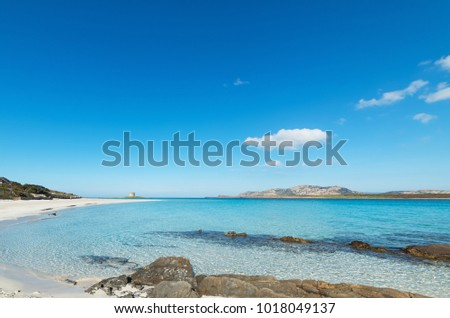 rocks and sand in La Pelosa beach, Sardinia #1018049137