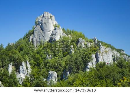 Rocks and trees in Sulov, Slovakia