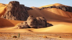 Rocks buried in the sand. Algerian part of the Sahara.