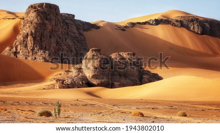 Rocks buried in the sand. Algerian part of the Sahara. Foto stock ©
