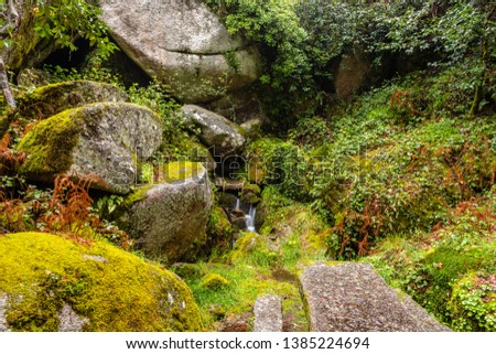 Rocks covered by green moss in the Peneda geres National Park forest, north of Portugal.