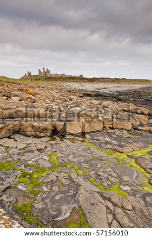 Rocks covered  with seaweed and yellow lichen in the foreground with Dunstanburgh Castle in the distance