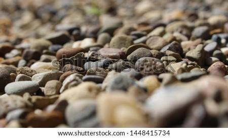 Rocks on rocks on rocks #1448415734