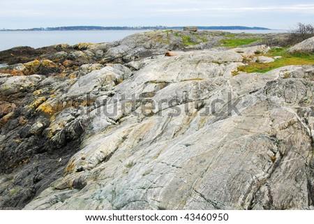 Rocks on sea shore in sunset moment, victoria, british columbia, canada