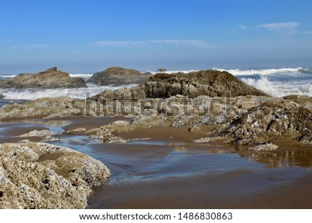 Rocks on the shoreline. Tide pools at the beach. Rough Pacific coast line.