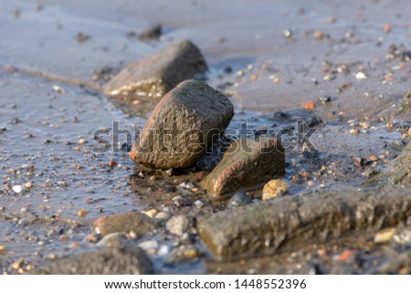 Rocks scattered along the muddy shoreline of a river