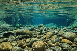 Rocks underwater on riverbed with clear freshwater, Dumbea river, Grande Terre, New Caledonia