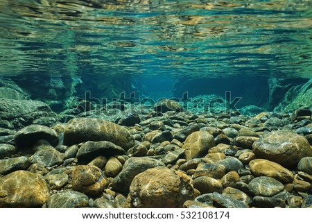 Rocks underwater on riverbed with clear freshwater, Dumbea river, Grande Terre, New Caledonia #532108174