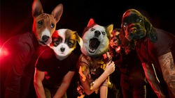 Rockstars band. Talented dogs, professional musicians performing on dark background in neon light. Concept of music, hobby, festival, contemporary art collage. Modern design. Copyspace.