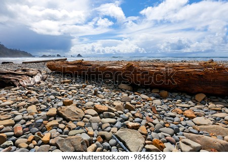 Rocky beach and driftwood tree logs swept ashore -- on the wild Oregon coast