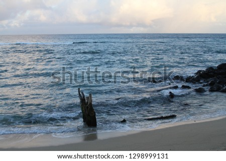 rocky beach maui #1298999131