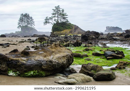 Rocky beach with little islets in a low tide  on the West Coast Trail located on Vancouver Island in British Columbia