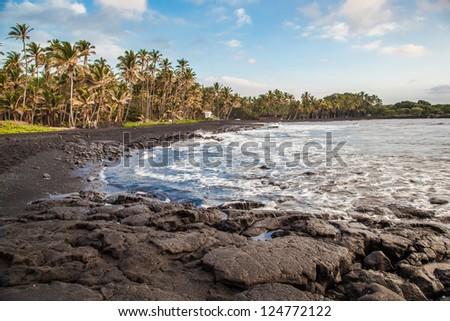 Rocky black sand beach and coconut palm trees in Hawaii