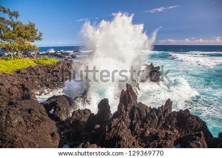 Rocky coastline, Big Island, Hawaii