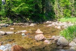 Rocky creek Czarna Wiselka. Source creek of the Vistula River.