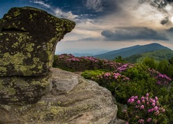 Rocky Lookout on Jane Bald with  rhododendron in foreground