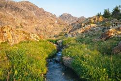 Rocky Mountain Landscape in Colorado
