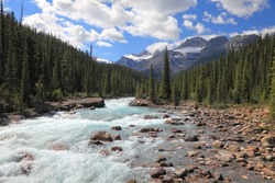 Rocky mountains and river with a rapids current in a valley between mountain wood in Banff National Park (Alberta, Canada)