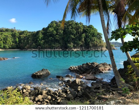 Rocky paradise coast with rich blue water and palm tree #1211700181