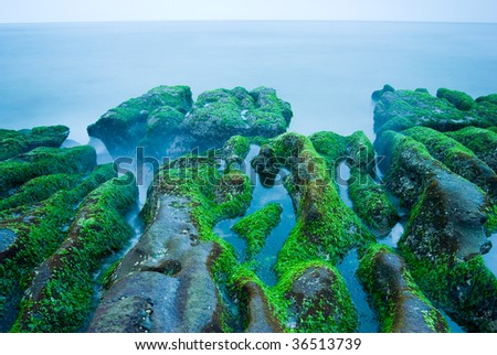 Rocky Seacoast full of green seaweed, long time exposure, Taiwan, East Asia - stock photo