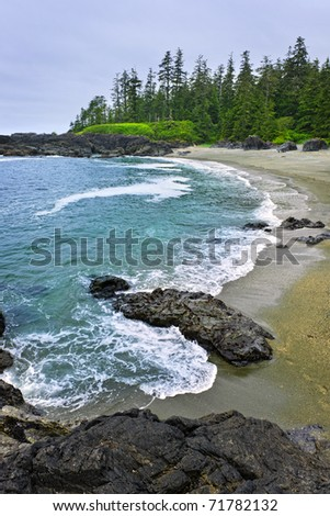 Rocky shore of  Pacific Rim National park, Canada