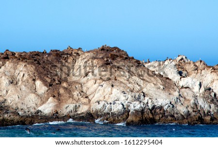 Rocky shoreline near Pebble beach, Monterey Peninsula, California, USA, on the 17-mile drive route