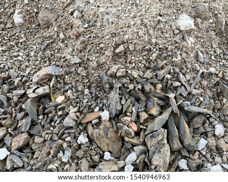 Rocky soil. Stony soil.  Rocky soil background. #1540946963