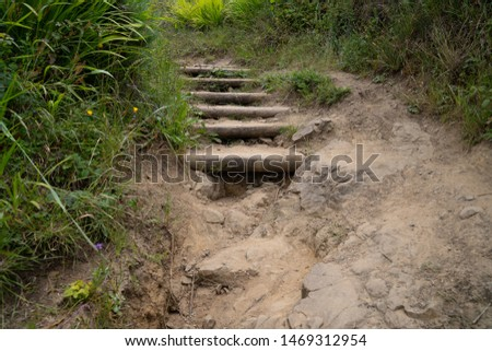Rocky stair path on dirt trail falling apart with some weeds #1469312954